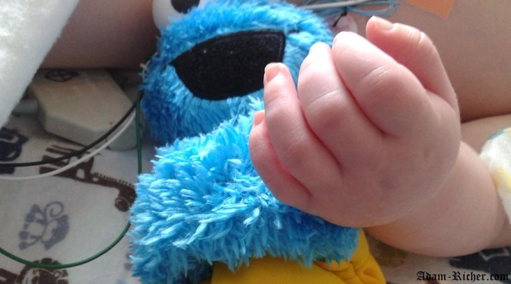 Adam et son fidèle compagnon Cookie Monster